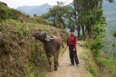 UPAP_Nepal025