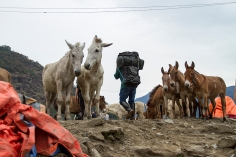 UPAP_Nepal027