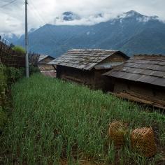 UPAP_Nepal029