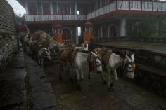 UPAP_Nepal050