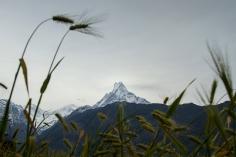 UPAP_Nepal064