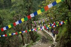 UPAP_Nepal078