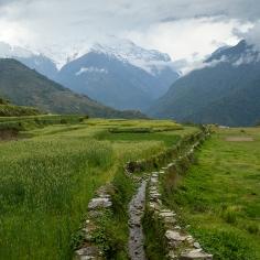 UPAP_Nepal135